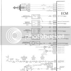 Vn Commodore Wiring Diagram 2005 Polaris Predator 50 V8 Library