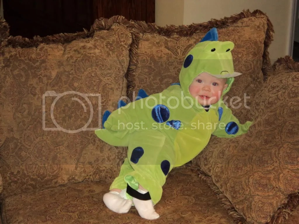 Cutest little Dinosaurus