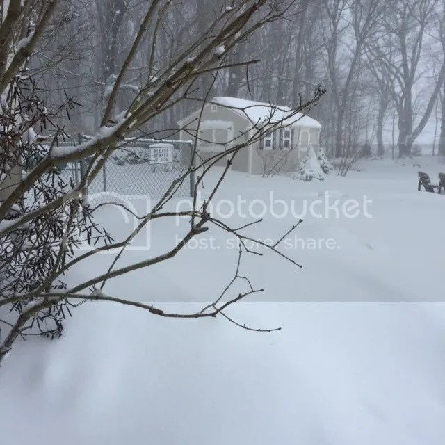photo jan27snow_zpsiev3kmrg.jpg