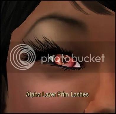 SL Eye Lashes