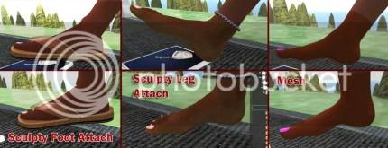 SL Feet