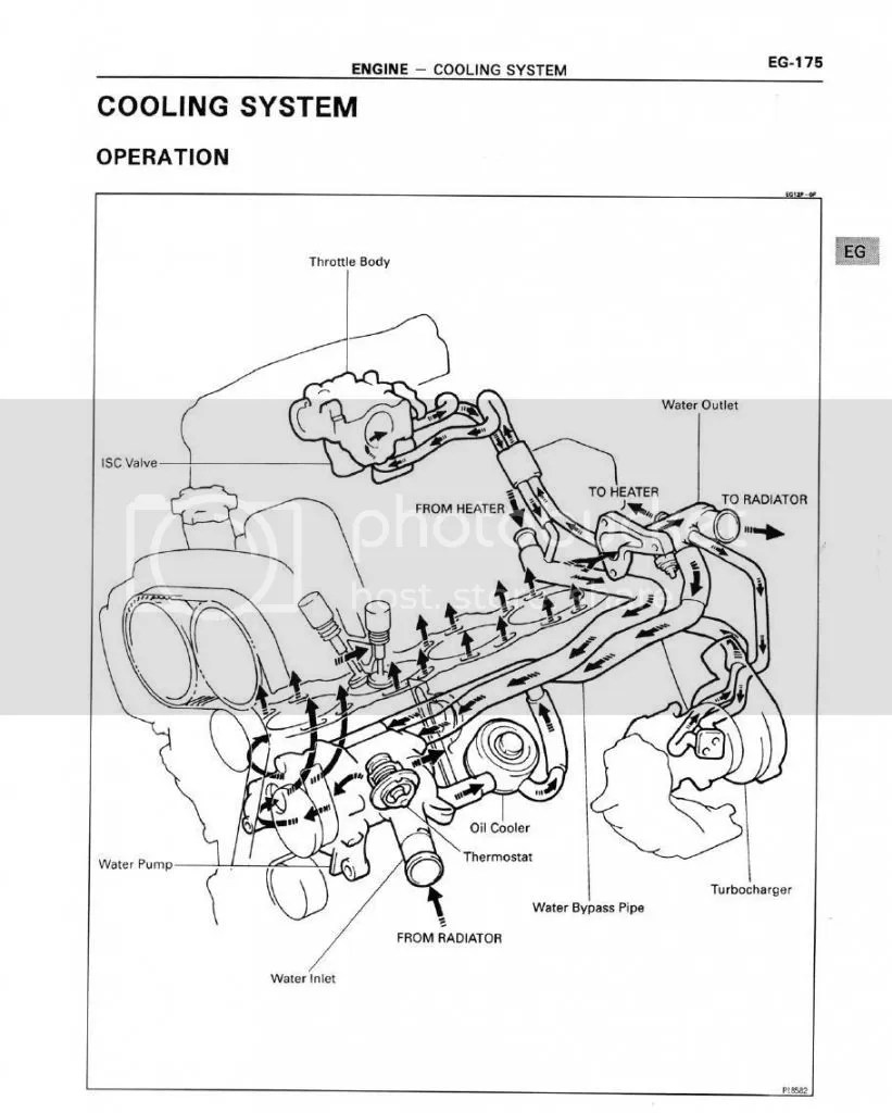 Honda Mr 175 Wiring Diagram Auto Electrical Mr175 Related With