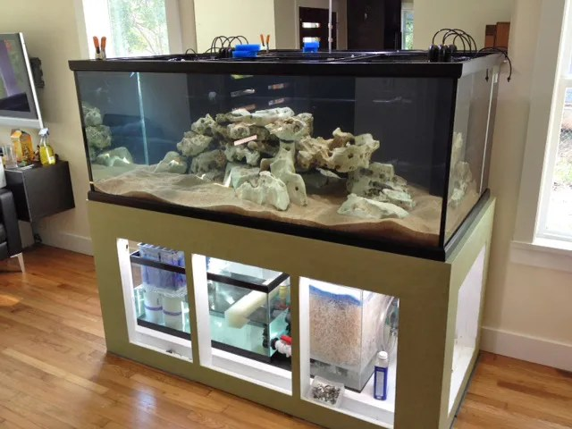 Plywood Aquarium Stand