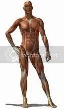 Trodimenzionalne poze ljudskog tela!