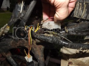 Stator to regulatorrectifier harness chewed by Fiefel the