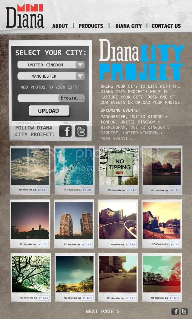 Diana Website Design - Diana City Project