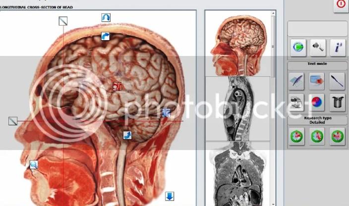 Image result for matrix decoder brain
