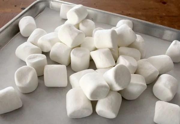 photo Snowman-Marshmallows-1.jpg