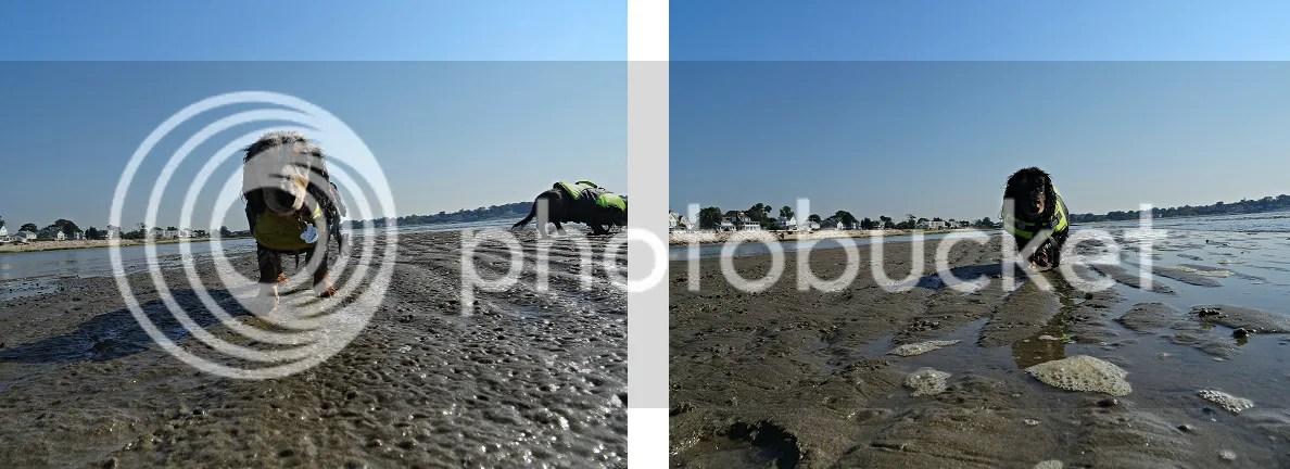photo 1_zpszkbx3h3b.png