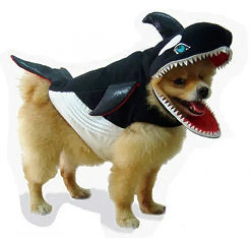 Killer Whale Pet Dog Costume