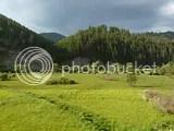 photo 4589_zps46ed141a.jpg