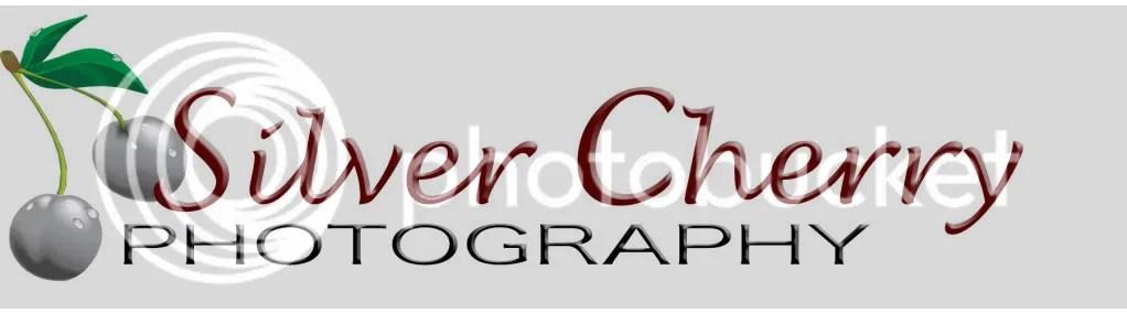 Silver Cherry Photography Logo