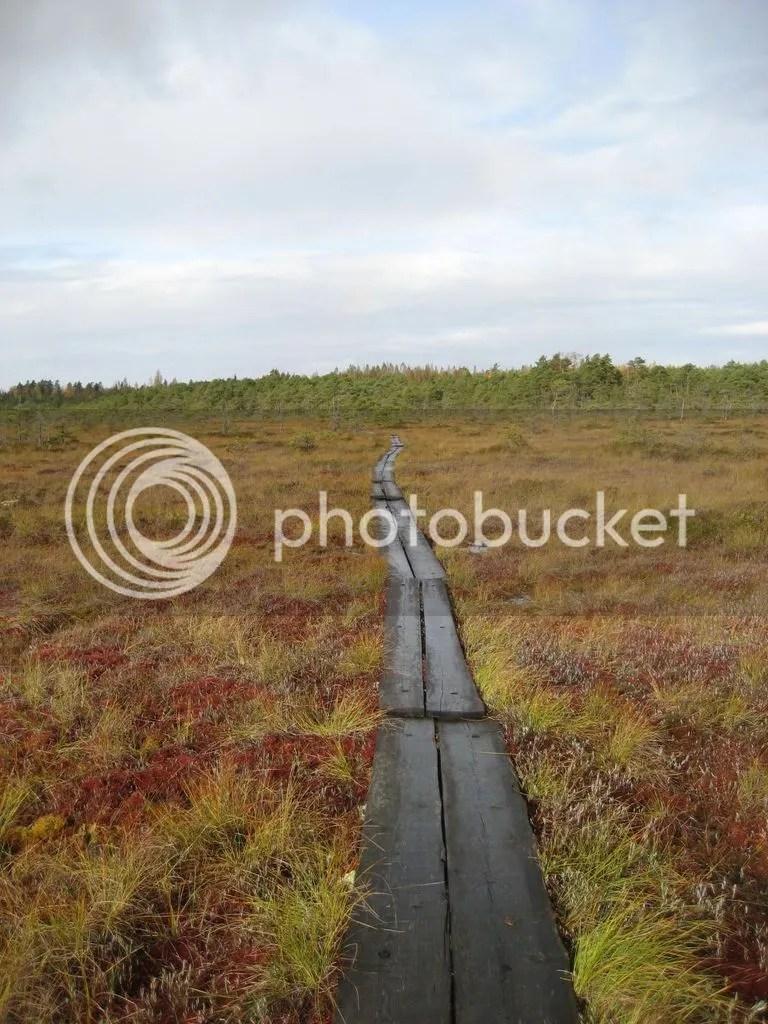 photo Valkmusan kansallispuisto 0916-25_zpstrcujrvp.jpg