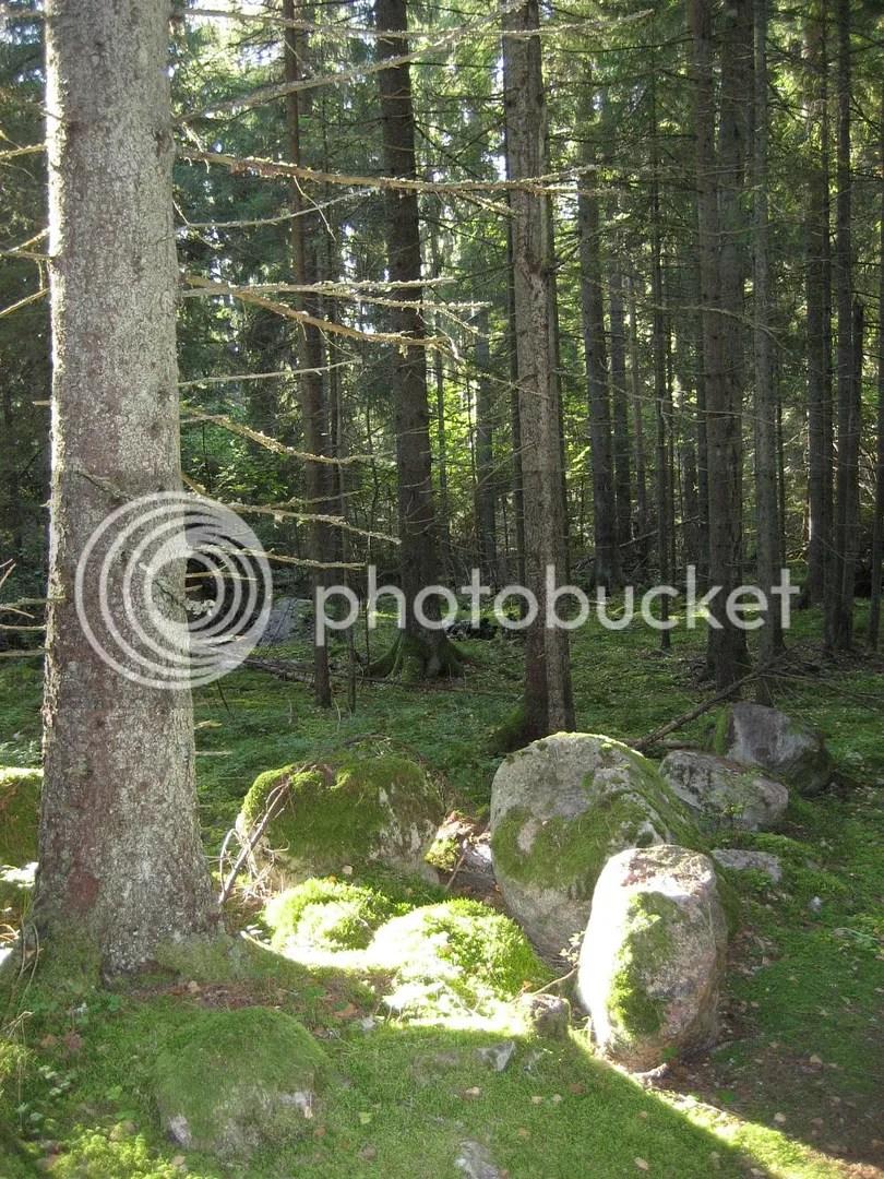 photo karkalin luonnonpuisto 2_zpsmbdowsla.jpg