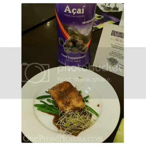 Pan-Seared Salmon-Terrine with Organique Acai Juice Gelee