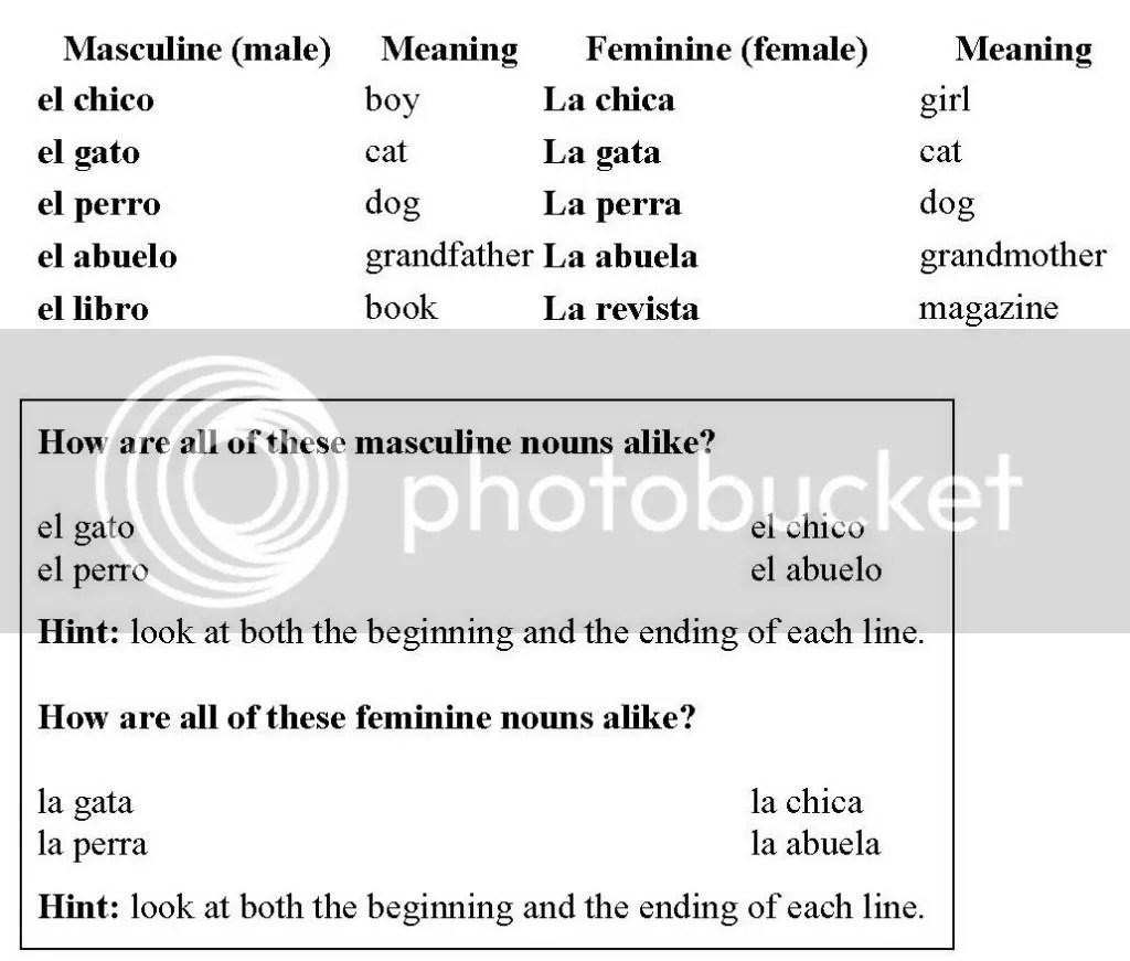 Feminine Plural Nouns In Spanish My Opera