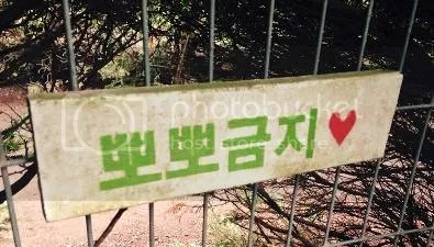 photo Jeju 7_zpswwomqd0o.jpg
