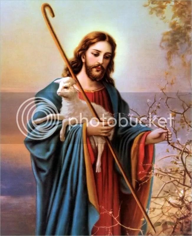 Image result for hình ảnh chúa chiên lành