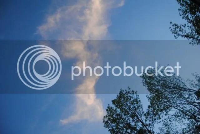 photo DSC_0273.jpg
