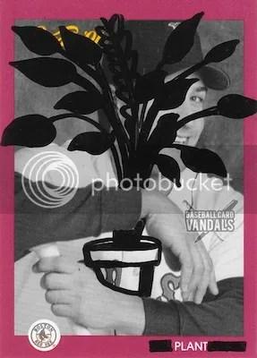 photo plant_zpse7dbb7a5.jpg
