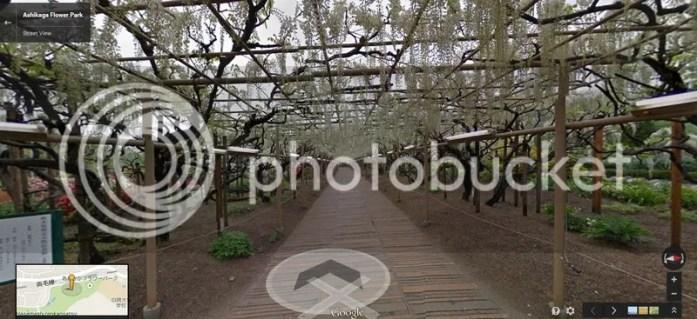 photo ahikagaflowerpark_googlemap7.jpg