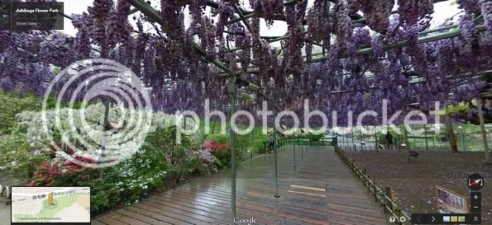 photo ahikagaflowerpark_googlemap8.jpg