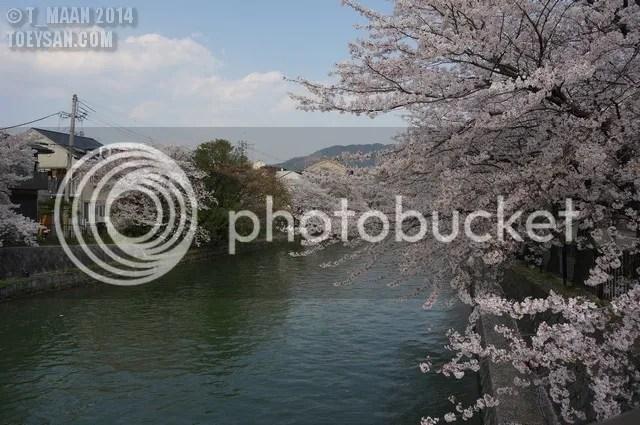 photo DSC02212.jpg