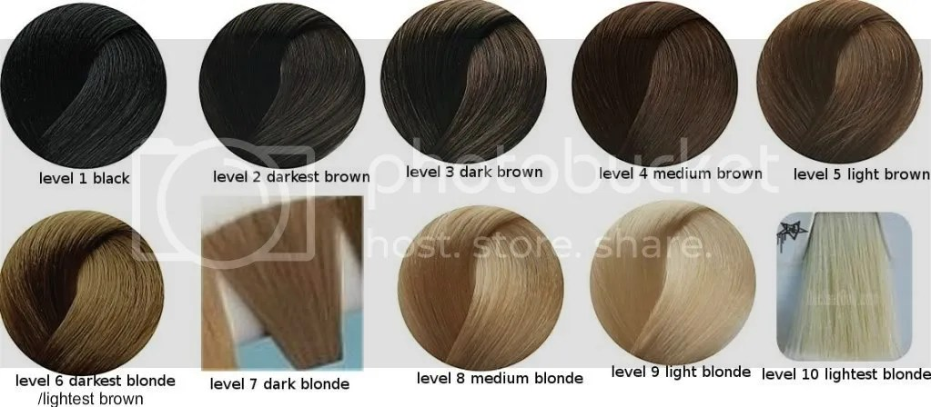 Hair Color Levels 1 10 Chart Hairstly