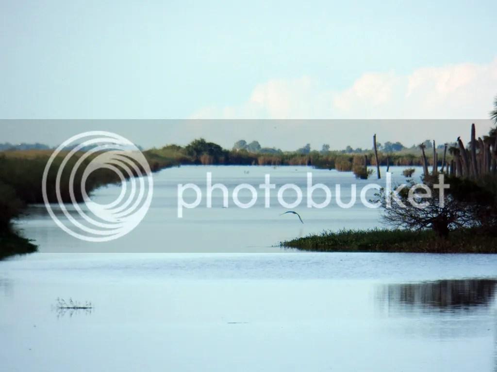 photo water1.jpg