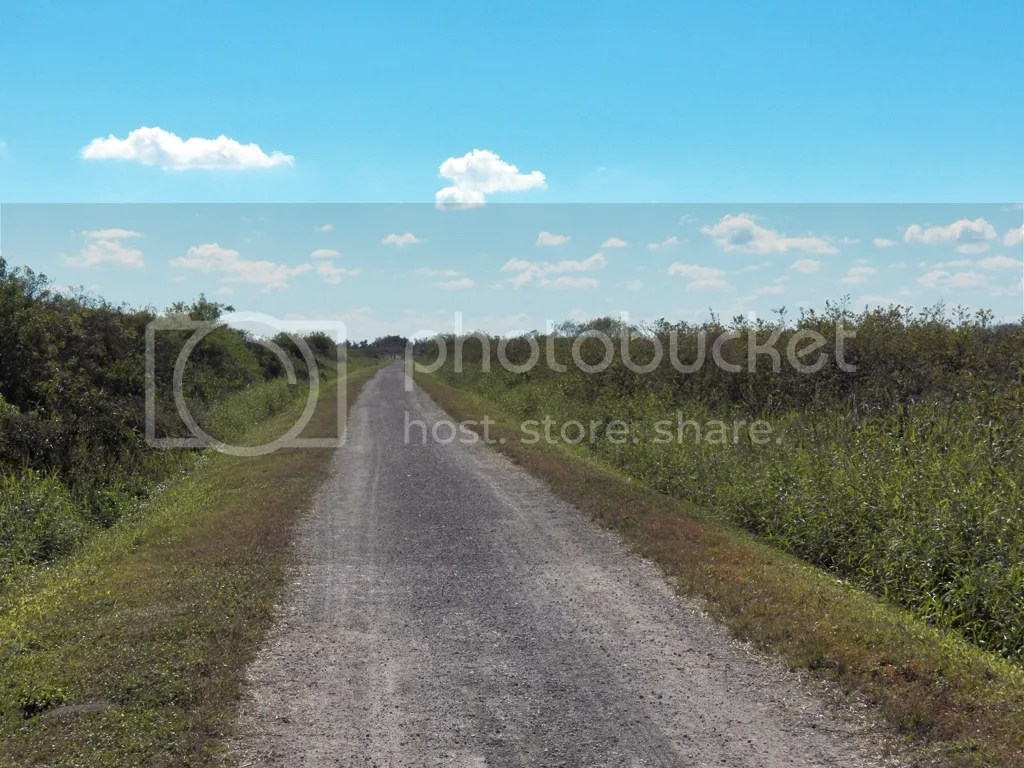 photo road-to-nowhere.jpg
