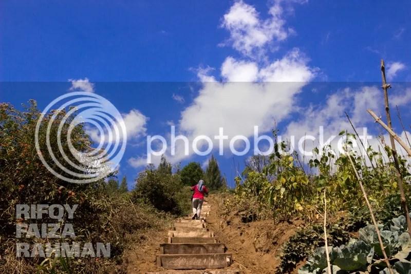 Anak tangga menanjak yang sangat membantu memudahkan berjalan
