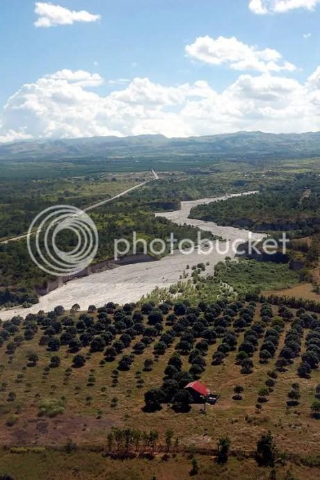 Mango Plantations