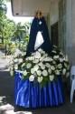 Mama Mary's Image