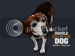 Beagle desktop