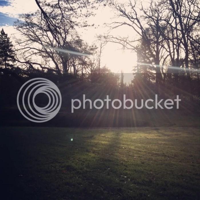 photo IMG_2727_zps831fc859.jpg