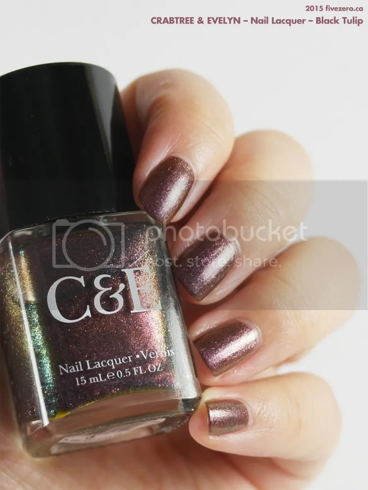 Crabtree & Evelyn Nail Lacquer in Black Tulip, swatch