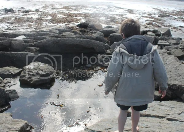 Tide Pools and Playgrounds