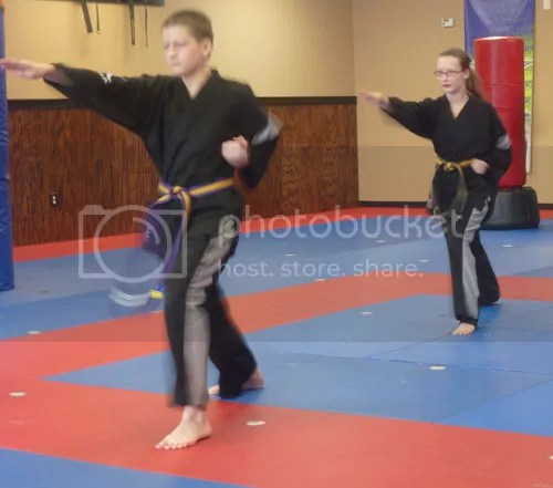 Learning Styles, School and Taekwondo