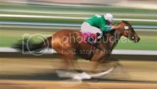 photo racehorse_zps6d24ea74.jpg