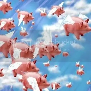 WhenPigsFly.jpg image by kailuasands