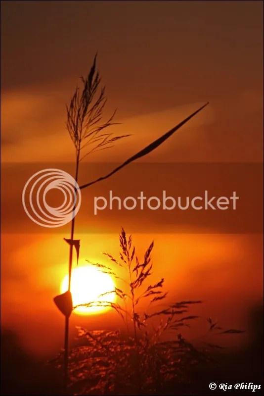 https://i0.wp.com/i83.photobucket.com/albums/j306/bathmen/zonsondergang/IMG_3628.jpg