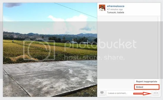 How to Embed videos and pictures from Instagram