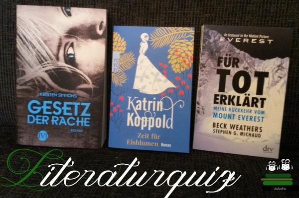 Bücher Runde 9