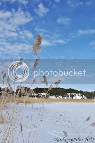 photo DSC_0010_zps8ff78bf1.jpg