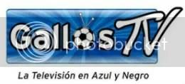 Gallos TV