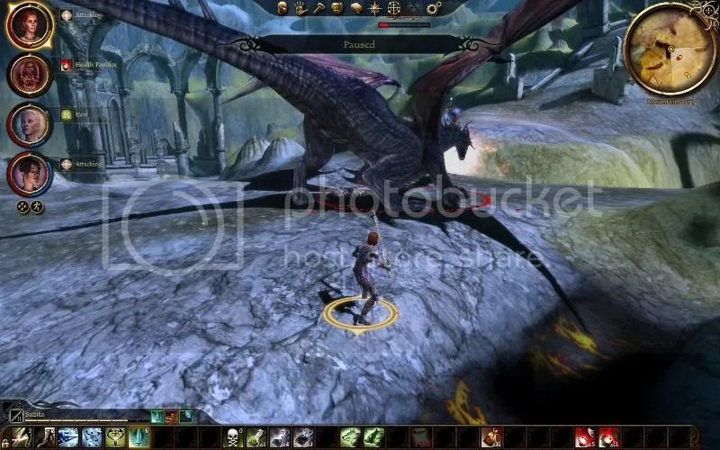 suz dragon