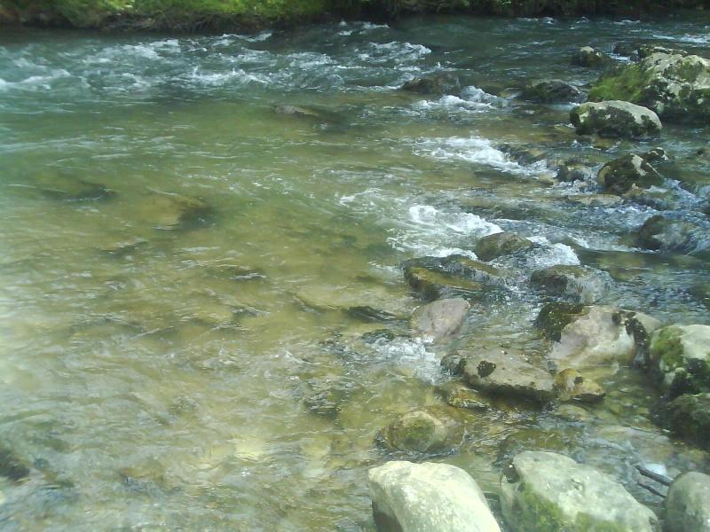 Résultat d'images pour rivière arize