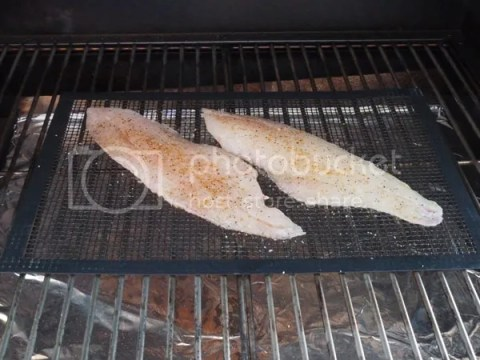 how to cook snapper fillets on bbq