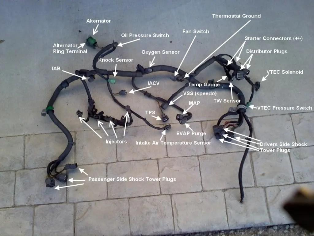 bb distributor wiring harness diagram bb printable obd1 gsr wiring harness diagram jodebal com source [ 1024 x 768 Pixel ]
