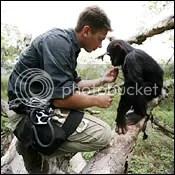 Eugene Cussons,Chimpanzee Eden,Escape to Chimp Eden,Chimp Eden